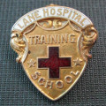 Pin from Lane Hospital Training School