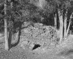 Henry Cowell's Lime Kiln, Placer County, California