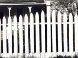 White fence, Freestone, California