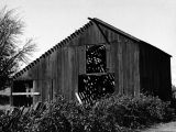 Barn, Penngrove, California